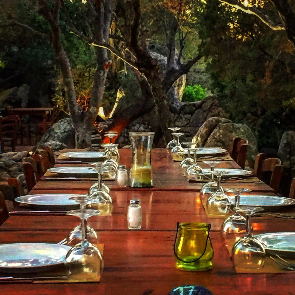 cena tra gli ulivi da fare a Porto Rotondo
