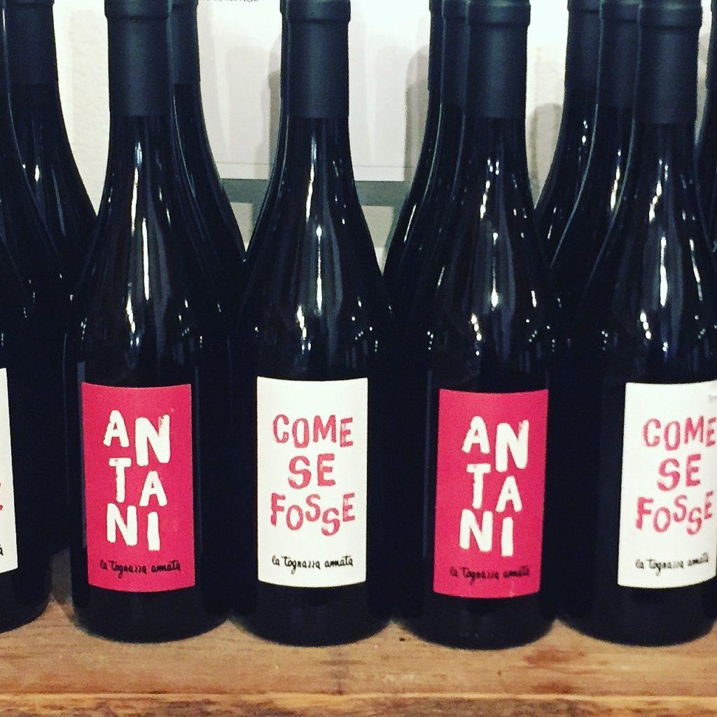 vini tognazza tra le enoteche a milano