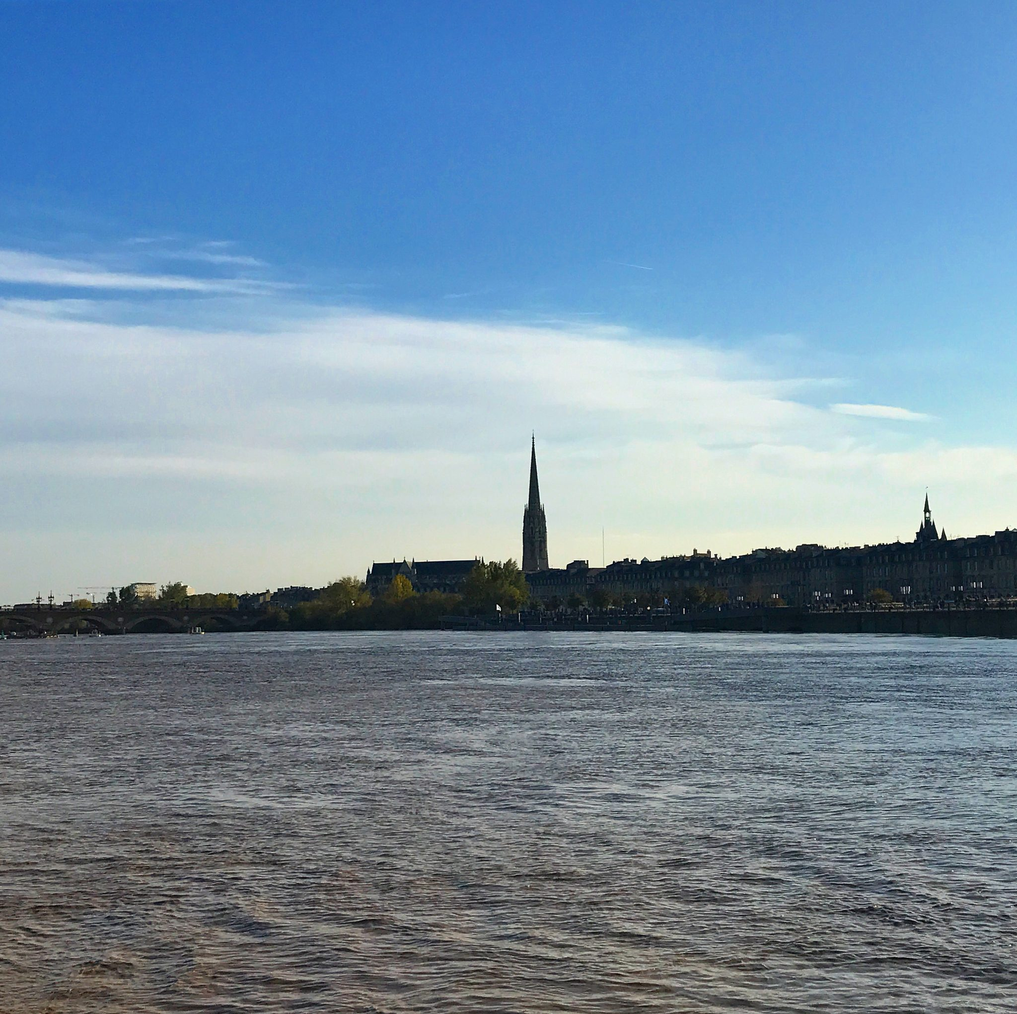 visitare bordeaux vista dal fiume